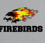 FIREBIRDS HIGHSCHOOL SPORTS t-shirt design idea