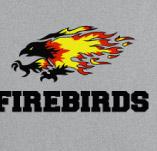 FIREBIRDS HIGHSCHOOL SPORTS t-shirt design idea
