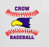CROW BASEBALL t-shirt design idea
