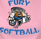 FURY SOFTBALL TEAM t-shirt design idea