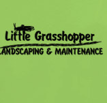 LITTLE GRASSHOPPER t-shirt design idea