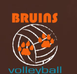 BRUINS VOLLYBALL PAWS t-shirt design idea